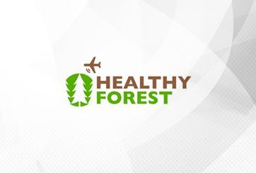 Healthy forest