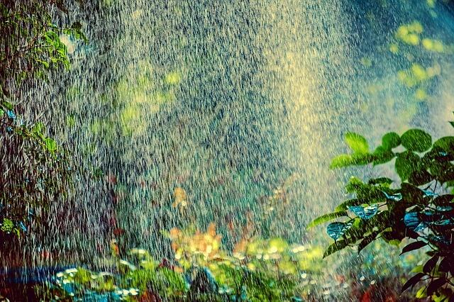 sprinkler-3569233_640 (1)